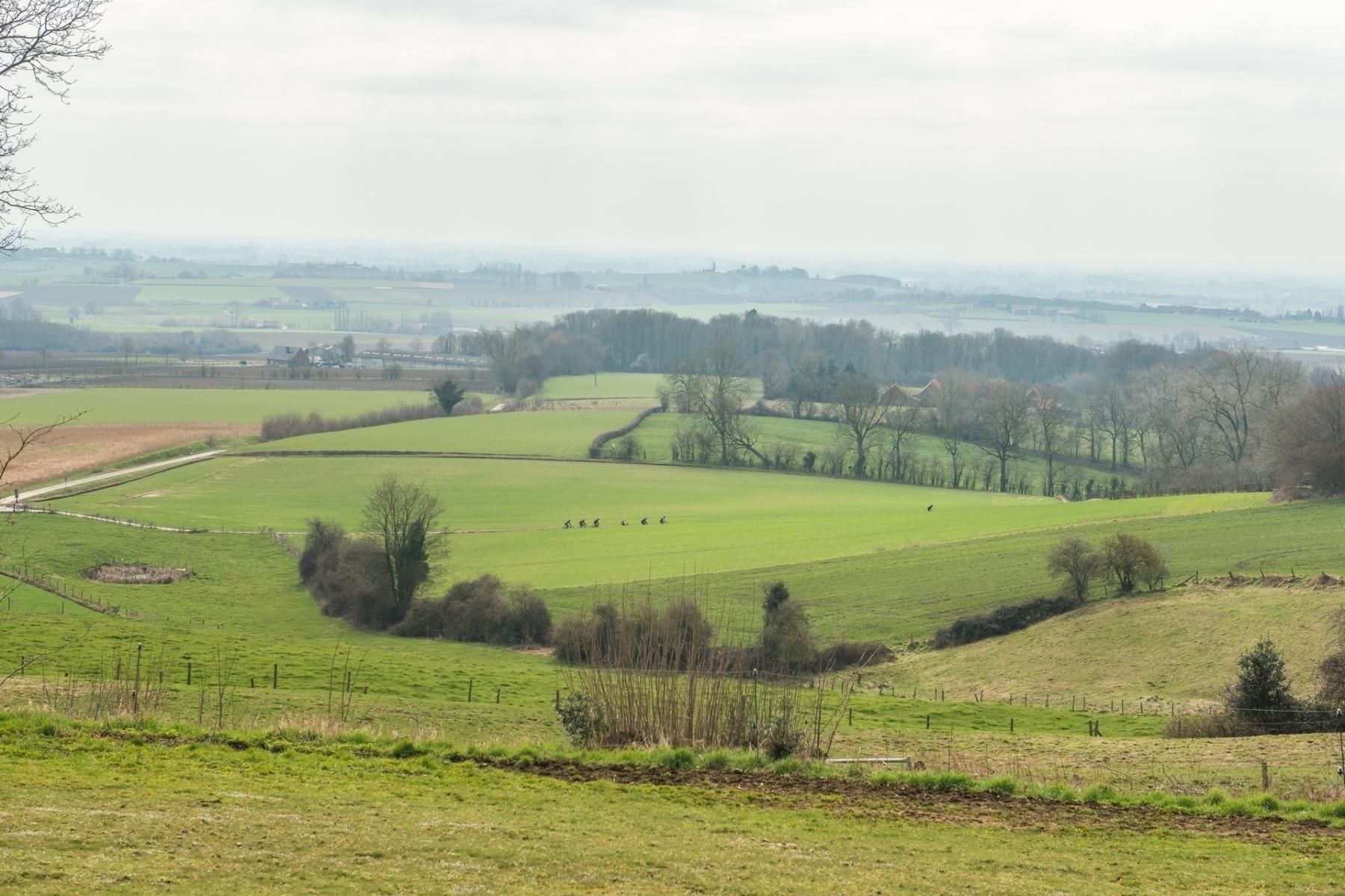 Region-valley